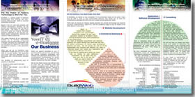 Professional brochure designing - back folds